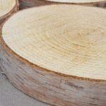 木の年輪板 白樺 樹皮つき Lサイズ(26-30cm)